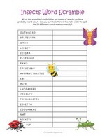 Insects Word Scramble